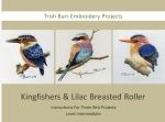 3 Bird Projects