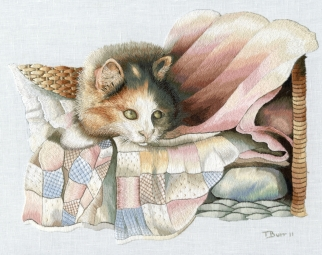 Cat On Quilt
