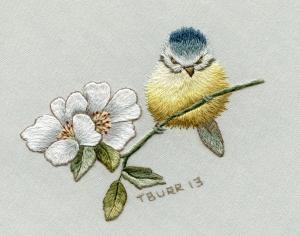 Blue tit & WIld Rose landscape