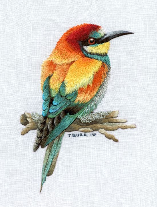 European bee eater digital download